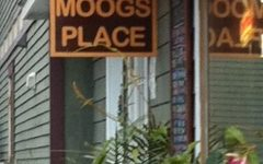 In the Moog: odd pub, good grub