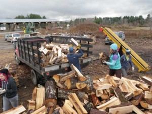 SERVE Fri helps get in the wood for the Lamoille County Firewood Project