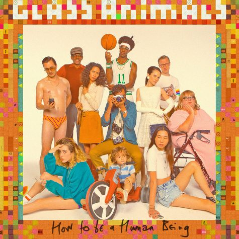 New Glass Animals album
