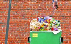 Confessions of a dumpster diver