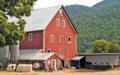 Declining milk prices put the squeeze on Vermont dairy farms