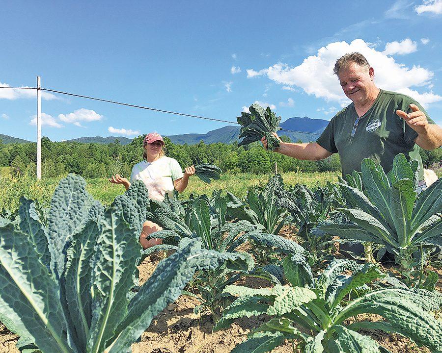 Joe+Tisbert+and+his+daughter+Becky+picking+kale