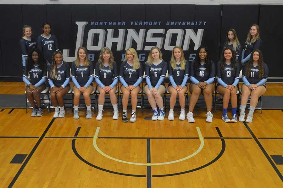 2019 women's volleyball team