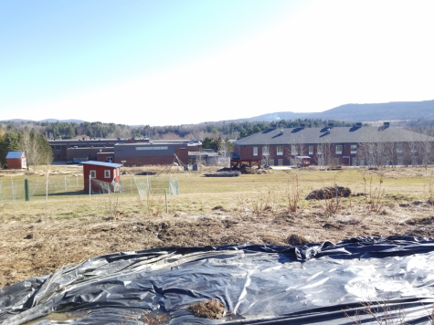 BFA Fairfax school farm still running during COVID-19